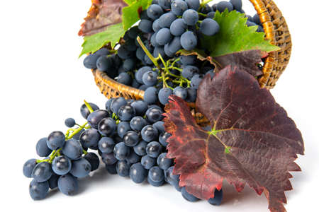 Grapes in a wooden basket. White background