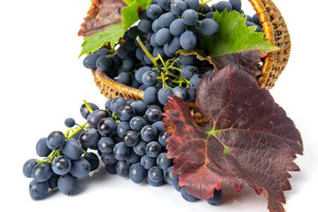 Grapes in a wooden basket. White background Standard-Bild - 151033684