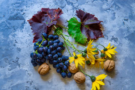 Fresh red grapes whit flowers and wallnuts on the stone table. Standard-Bild