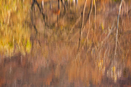 Colorful autumn forest with reflection in water of calm lake. Standard-Bild - 151076900