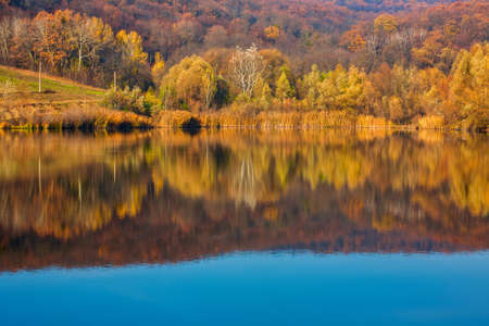 Colorful autumn forest with reflection in water of calm lake. Standard-Bild