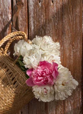 Flowers of pink red and white peonies in wicker basket on wooden table against wooden background Standard-Bild - 151076780