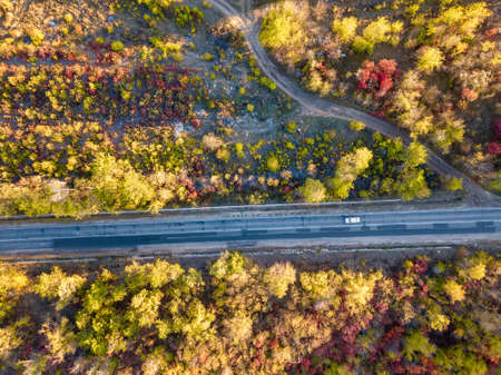 Aerial view of colorful forest in autumn with road cutting through Standard-Bild