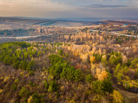 Beautiful bird s eye view drone landscape image during Autumn Fall of vibrant forest woodland. Autumn forest at sunrise, view from above