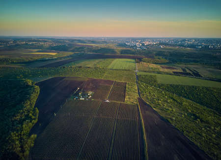 Aerial View From The Drone, A Bird'S Eye View To The Forest With Green Plantings Standard-Bild