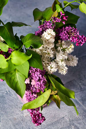Bunch of lilac flowers. Beatiful spring flowers