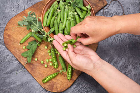 Woman hands hulled peas from the shell.