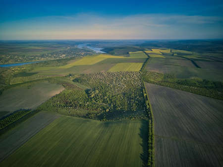 Aerial view over the agricultural fields at sunset
