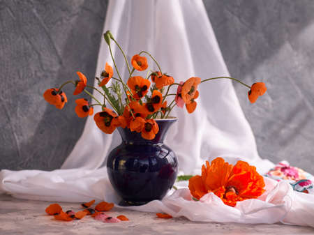 A Little Red Poppies Bouquet in blue ceramic vase Фото со стока