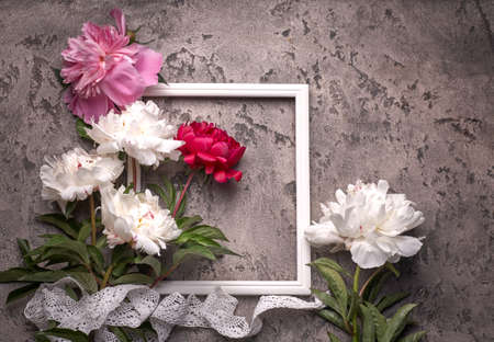 Paionies flowers isolated and white frame on gray background.