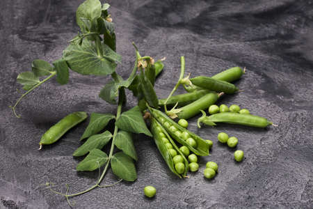 Pods of green peas with leaves on gray loft background