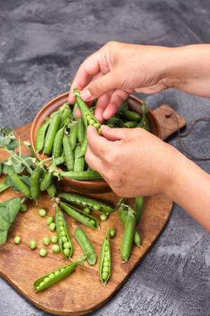 Woman hands hulled peas from shell Standard-Bild