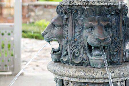 Bronze muzzle of lions, detail of a fountain close-up.