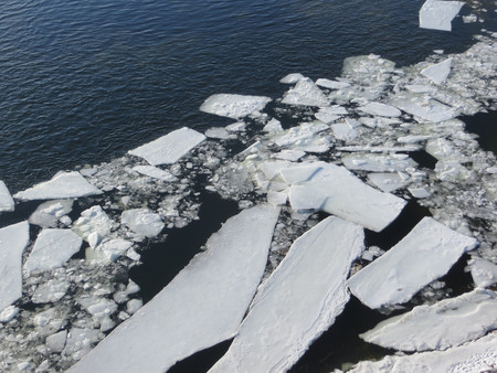 ice sheet: Ice in the water
