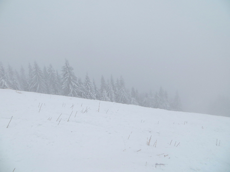 carpathian: Winter in Carpathian mountains Stock Photo