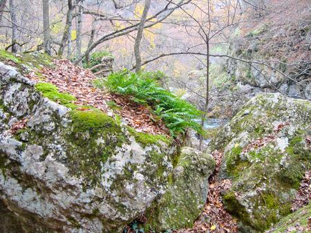 Rocks in Crimea, Ukraine