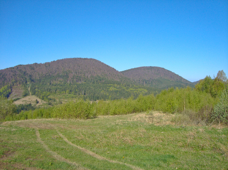 carpathian: Carpathian mountains