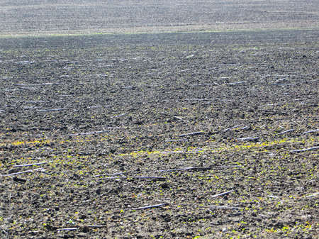 the ploughed field: ploughed field Stock Photo
