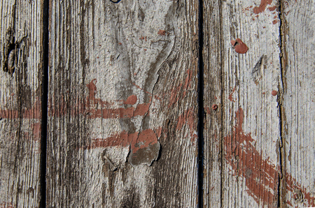 wood floor: Background of the wooden boards. Wood texture