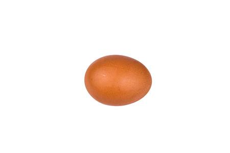 One hen egg isolated on white background