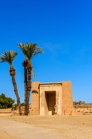 Palms on ruins of ancient Karnak temple. Luxor, Egypt