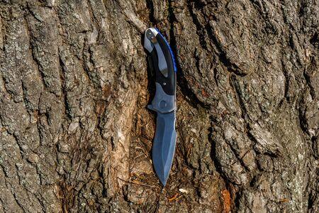 Survival folding knife on old tree trunk