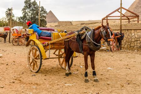 Horse with chariot near great pyramids in Giza, Egypt Banque d'images - 124771845