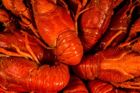 Background of the fresh red boiled crayfishes Stock Photo