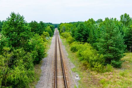 Old railroad in the forest on summer Stock Photo