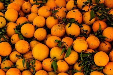 Background of many fresh ripe orange fruits