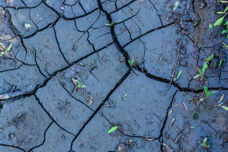 Background of cracked dry ground. Global warming