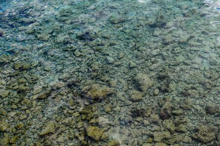 Background of Red sea water surface and bottom