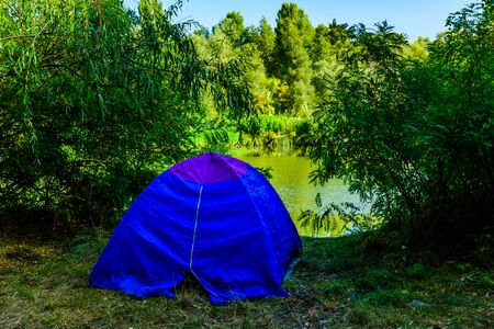 Blue tent in green forest on summer