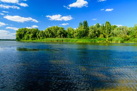 Summer landscape with green trees and river
