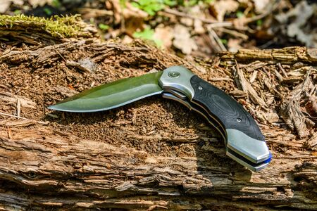 Survival folding knife on old tree trunk