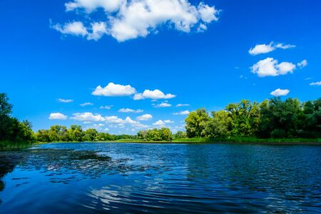 Paesaggio estivo con alberi verdi e fiume Archivio Fotografico