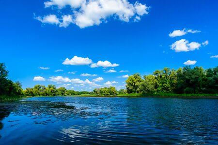 Paisaje de verano con árboles verdes y río. Foto de archivo