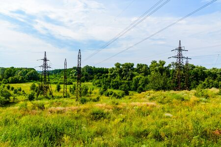 High voltage power line in a forest