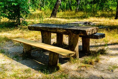 Picnic place in city park on summer Stockfoto