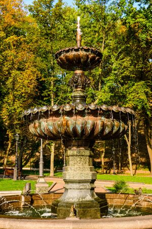 Fountain in a city park on summer