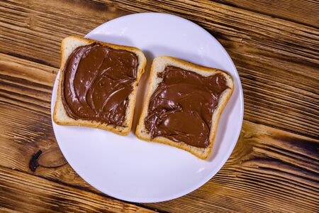 Two sandwiches with chocolate spread on white plate. Top view