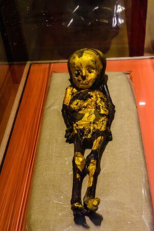 Cairo, Egypt - December 8, 2018: Ancient mummy of child in Museum of Egyptian Antiquities (known commonly as the Egyptian Museum or Museum of Cairo)