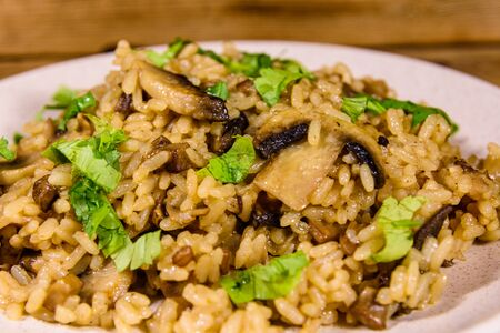Risotto with mushrooms and parsley in plate Reklamní fotografie