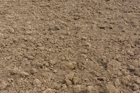 Background of plowed field prepared for sowing