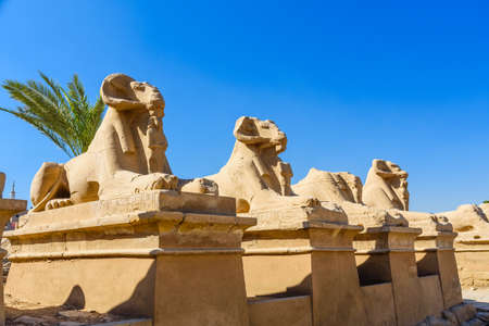 Avenue of the ram-headed Sphinxes in Karnak Temple. Luxor, Egypt