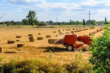 Harvester makes bales of straw at agricultural field. Agricultural concept