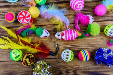 Heap of different toys for cat on wooden background. Top view