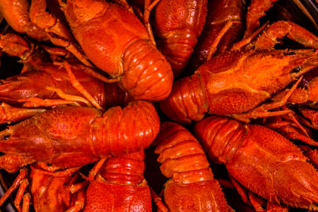 Background of the fresh red boiled crayfishes Stock fotó