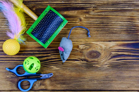 Pet slicker brushe, claw clipper and toys on wooden background. Top view
