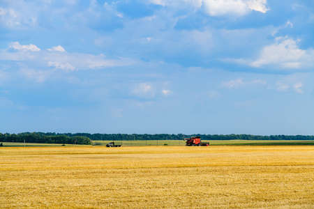 Combine harvester working at wheat field. Agricultural concept